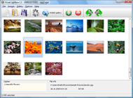 choose a flickr gallery for website Flickr Gallery Link Image